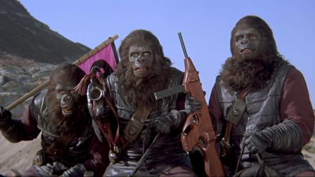 猿军出征,大破空城计,哪里愚蠢了?