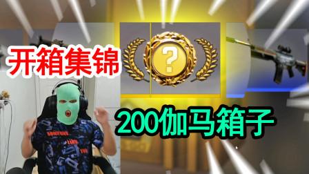 CSGO开箱:200个伽马武器箱集锦,头套和金色暴龙的力量!