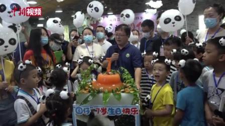 """两岸大熊猫粉丝同庆""""圆仔""""7岁生日"""