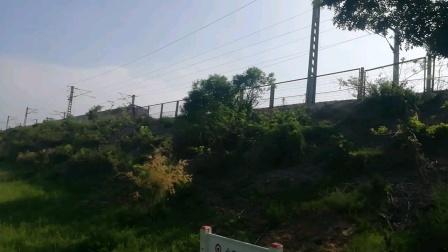 沈局沈段西红柿牵引K726次列车通过张家屯村地道桥