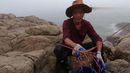 赶海小伙买条6斤重的鱼在礁石区打窝,捕获一只超大青龙虾,赚翻了