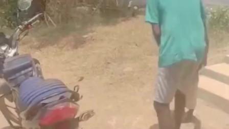 什么样的父亲才能这么对自己的孩子,果然是亲生的。