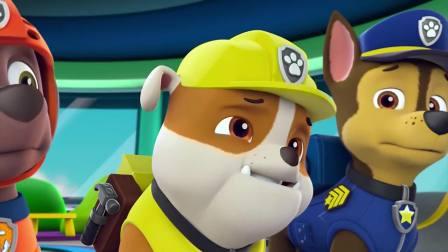 汪汪队:大雁也太胆大了,飞到猪圈里,直接抢走小猪的面包!
