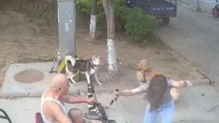 """女子路边拴狗引不满, 被老人驾车撞倒, 老人""""私心""""被监控拍下"""