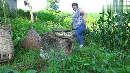 农村王四:刘老九媳妇儿和二除杂草,回家煮个稀饭凉拌个黄瓜,农家人的生活