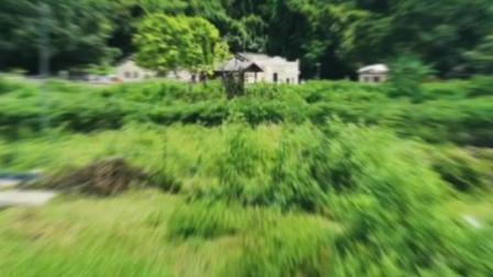 華暢旅遊香港鴨洲荔枝窩綠色遊