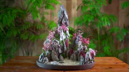 找了几块石头回来,将它们制作成假山盆景,成品出来,美到我了