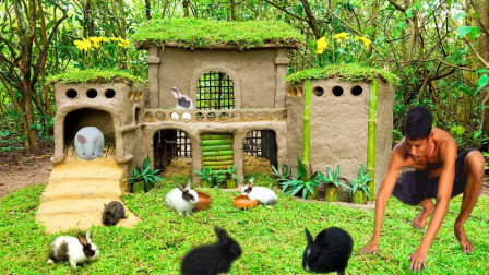 农村小哥户外溜达,直接送给兔子们一套房子,他的房子从哪来的?