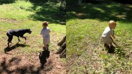 """男童与狗玩丢木棍游戏 下一秒捡起的""""木棍""""让人头皮发麻"""