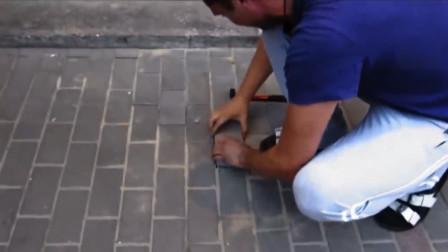 地板下频频传出吼叫,男子好奇将地板撬开,瞬间不淡定了!