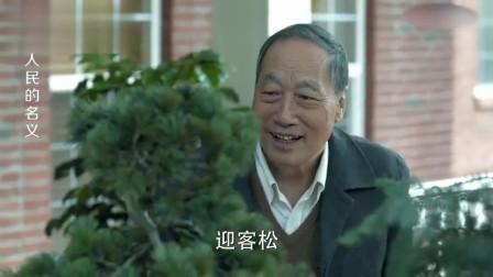 陈老去高育良家做客,一看他后花园的黄山迎客松,顿时就察觉到不对劲