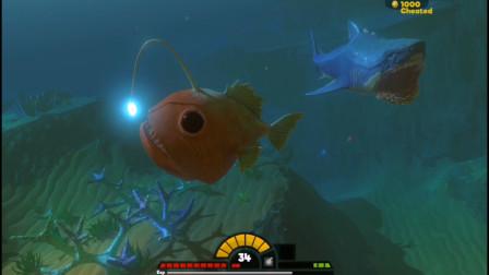 海底大猎杀:这条鱼到底能不能隐形