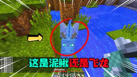 我的世界暮色森林27:请问你有看到我的飞龙吗?你这不是一只泥鳅吗