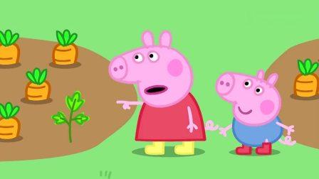 小猪佩奇:猪爷爷的菜园子,里面什么都有,而却全是绿色蔬菜哦