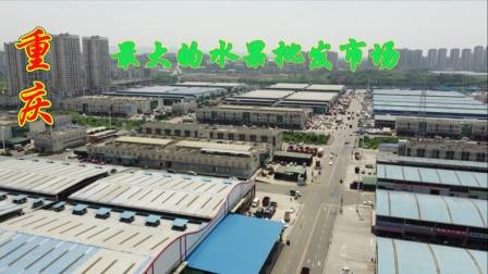 重庆最大的水果批发市场,全重庆80%的水果需求,都是出自于这里!