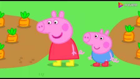 小猪佩奇:猪爷爷为自己的花园感到自豪,佩奇想种草莓!