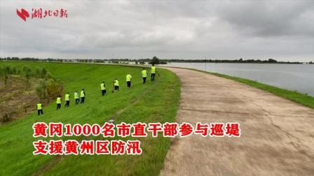 黄冈1000名市直干部参与巡堤 支援黄州区防汛