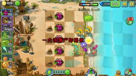 植物大战僵尸2:魔音甜菜联手野兽猕猴桃,直接爆炸伤害