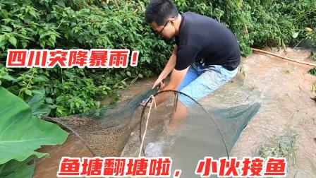 四川农村暴雨之后,小伙用网兜接鱼,半小时收获3斤土鲫鱼真过瘾