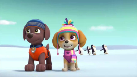 汪汪队:狗狗们真是幸福,狗狗饼干行李箱都装不下了,真是羡慕 (1)