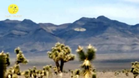 碟形UFO降落在郊外荒地上,不巧被路人拍下清晰画面!