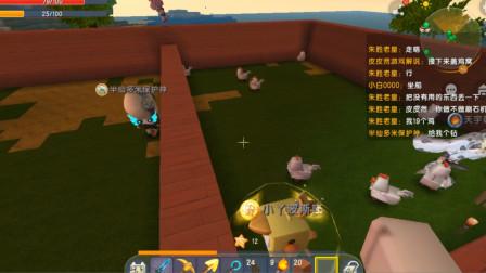 迷你世界冒险四:鸡窝和猪圈建成准备放动物