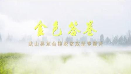 金色答卷——武山县龙台镇脱贫攻坚专题片