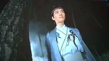 天涯明月刀 王子知道的可真多啊 看背影还蛮帅的