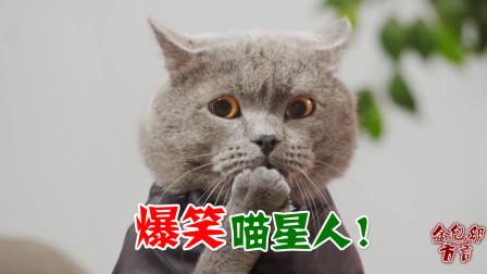四川话爆笑配音:一只立志做优秀员工的喵星人