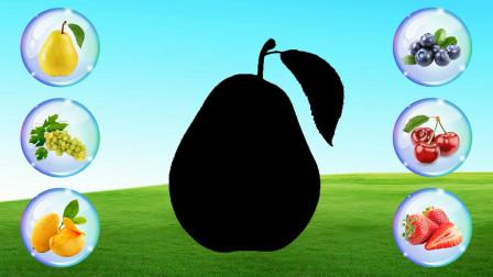 学习认识车厘子,芒果,蓝莓等6种水果