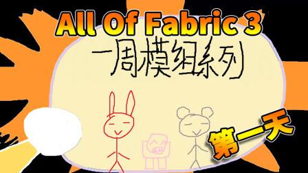 All of fabric 3 第一天丨红叔的一周模组系列