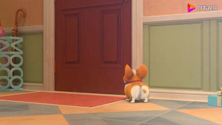 飞狗MOCO:主人穿上披风,把MOCO忘在家里,专属圣诞礼盒哦!