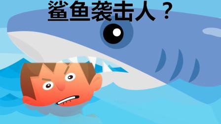 如果人被鲨鱼了,怎么办?大白鲨科普知识英语学习