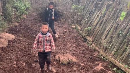 彝族小伙走几公里山路上山捡柴,每天就吃几个烤土豆