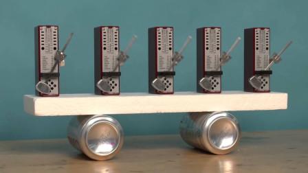 什么才是共振现象?5个节拍器放在平面,发生了神奇的科学现象!