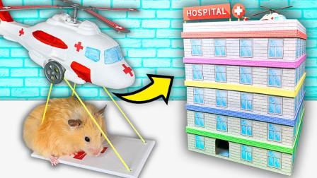 小仓鼠有多聪明?老外自制五层医院迷宫,一路机智通关!