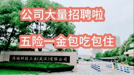 武汉公司大量招聘,工资待遇7700元包吃包住五险一金,想来上班吗