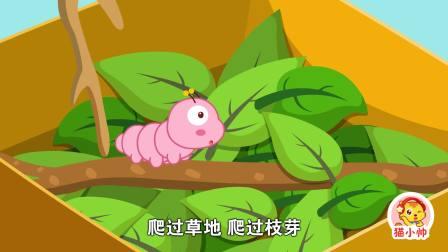 猫小帅:儿歌之毛毛虫丑丑的毛毛虫是怎么变成美丽蝴蝶的呢