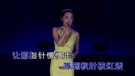 沈丹丹 - 不是因为寂寞才想你(演唱会)