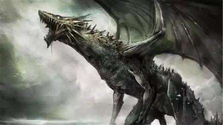 """斗罗大陆:龙族也分等级?黄金圣龙是龙王,而它最终形态是""""海神龙""""!"""
