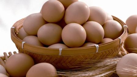 如何辨别新鲜鸡蛋?教你个方法,轻松挑选新鲜鸡蛋