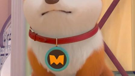 飞狗MOCO:开玩笑,主人哪有我这么厉害?