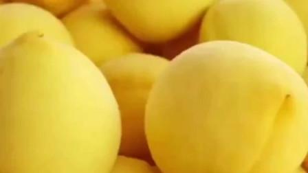 黄桃的价格一路走低的原因