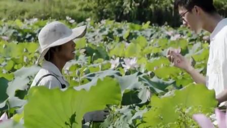 舌尖上的中国:田里采回的新鲜蔬菜,回家直接下锅,纯天然还营养