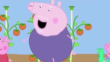小猪佩奇猪奶奶做了披萨给大家吃,可是乔治不喜欢吃色拉