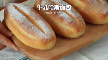 小白必备,软到不知所措,无油牛乳哈斯面包