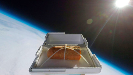 把一块面包送到20000米太空,结果会怎样?尝上一口味道如何?