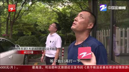 杭州近一个月发现800处蜂窝  有消防站一天处理6个!