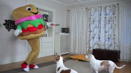 美国萌宝时尚,DIY巨型汉堡包大饼,快来看看吧