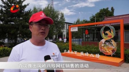 """网络主播直播带货,为隆德县农特产品""""拼单"""""""